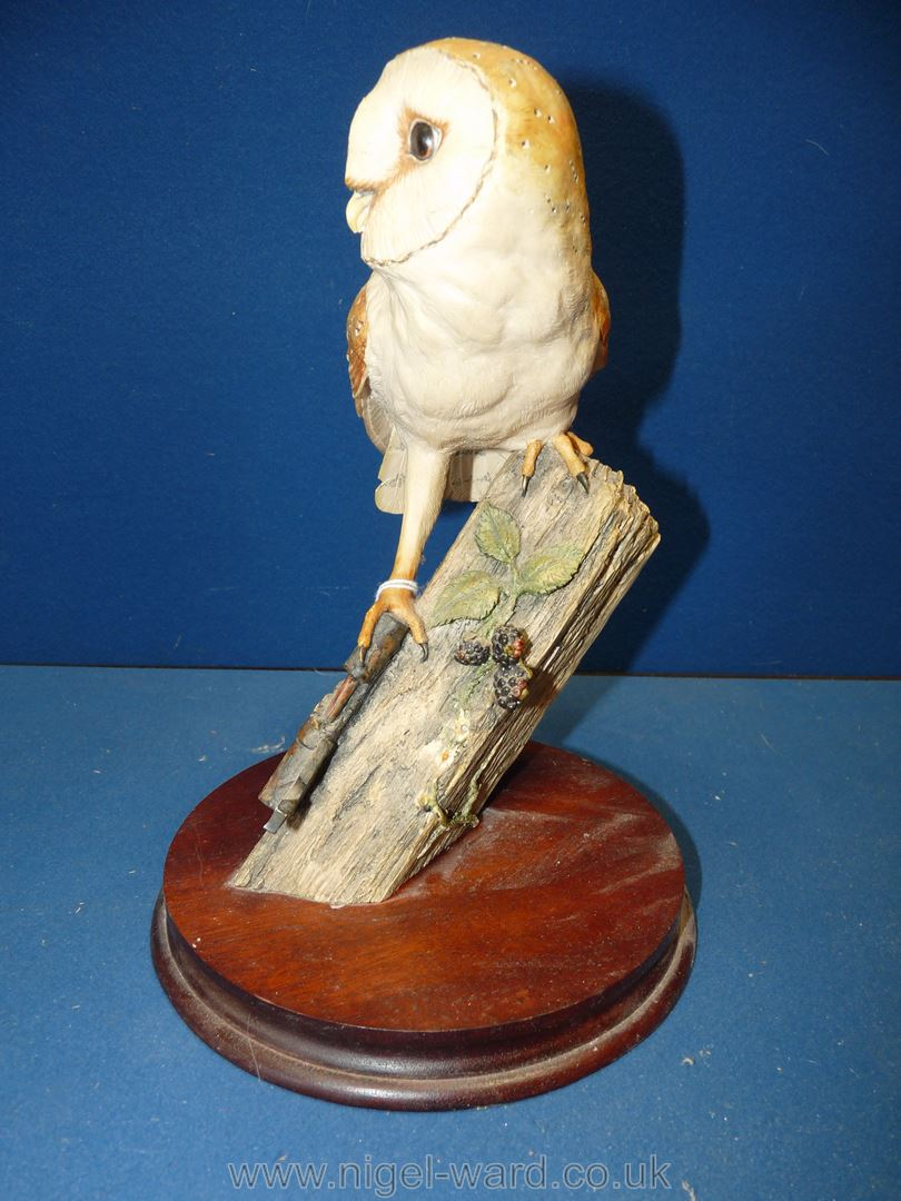 """A Border Fine Arts 1990 Barn Owl on a firm base, 11"""" x 9"""", - Image 3 of 3"""