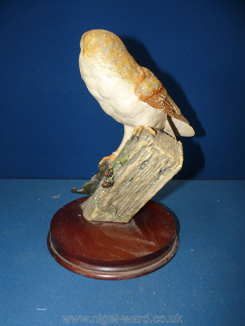 """A Border Fine Arts 1990 Barn Owl on a firm base, 11"""" x 9"""", - Image 2 of 3"""