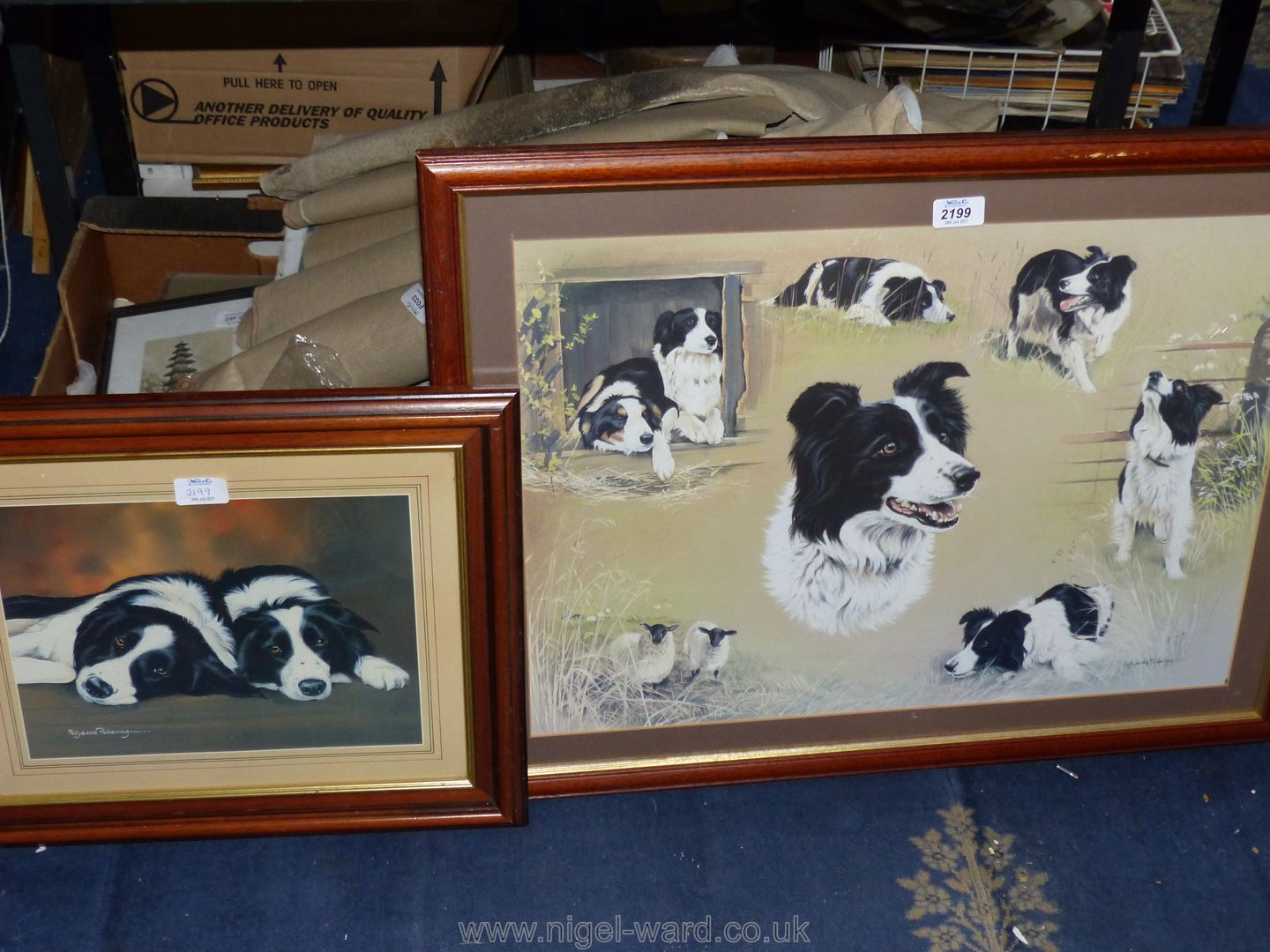 A framed Pollyanna Pickering print depicting a study of Border Collies,