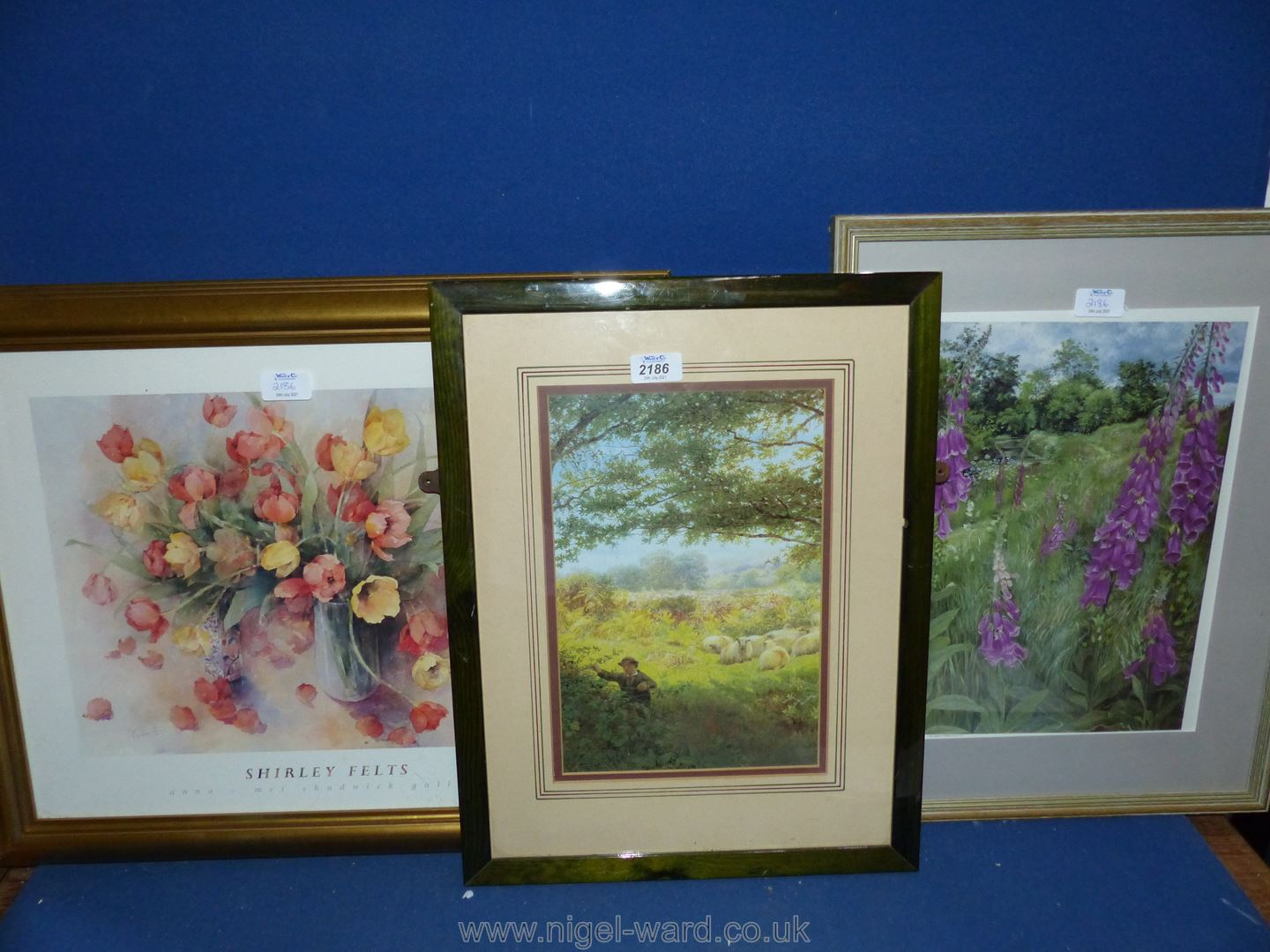 """A framed and mounted Print titled 'foxgloves' by Meg Stevens, 16"""" x 20 1/2"""","""