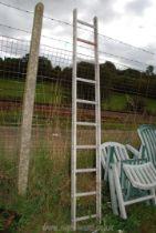 A ten rung aluminium ladder.