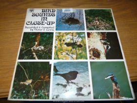Victor Lewis bird sounds LP.
