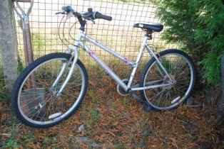 Ladies 21 speed Mountain bike (rear tyre a/f).