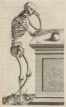 Biologie - Botanik - - Dioscorides, Pedanius. Kräuterbuch deß uralten und in aller Welt berühmtesten