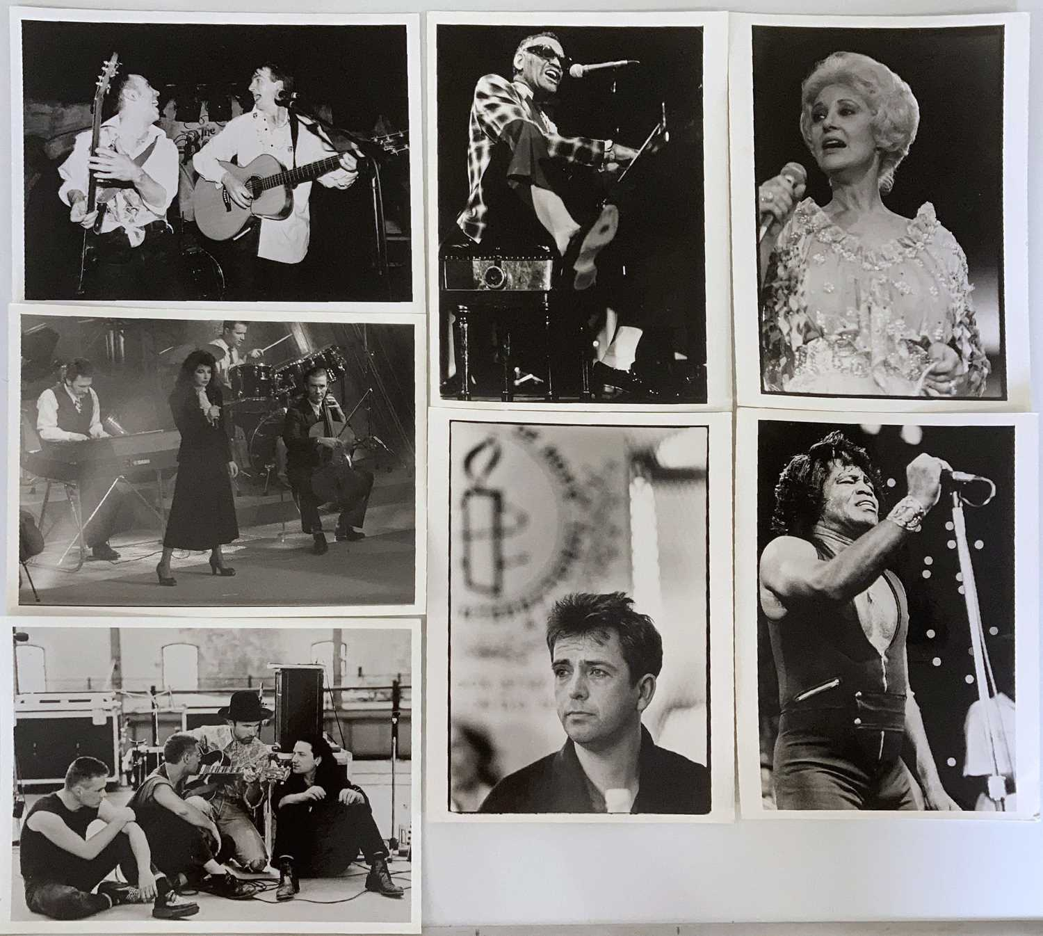 MUSIC PHOTOGRAPHS - CLASSIC ROCK AND POP - U2 / KATE BUSH AND MORE. - Image 6 of 7