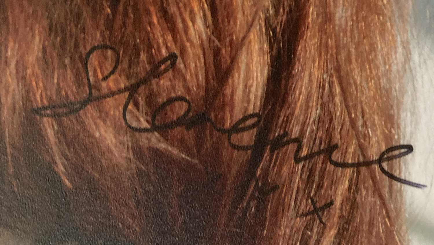 FLORENCE AND THE MACHINE SIGNED ITEMS. - Image 10 of 10