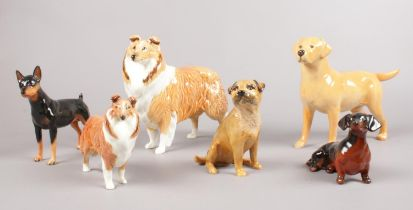 A group of Beswick dog figures. Collie Large & small, Dachshund, Brown Terrier, Mini Pinscher (