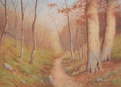 E.L. Fear (British 20th century) Woodland scene
