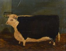 English School (19th/20th century) Portrait of a bull