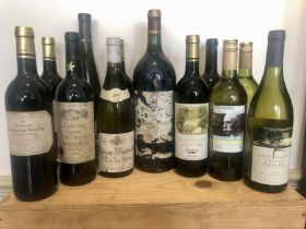 12 Bottles mixed Lot including 1 magnum assorted good Drinking Wine