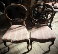 A pair of Victorian dining chairs, raised on cabriole legs