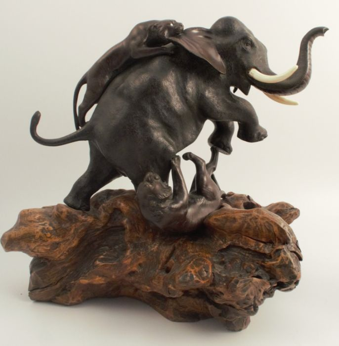 A bronze model, of an elephant being attacked by two tigers, on a wooden root base, height 16ins