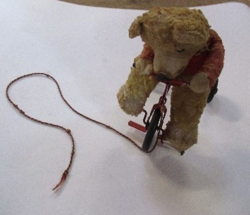 A pull-along bear, riding a red tricycle