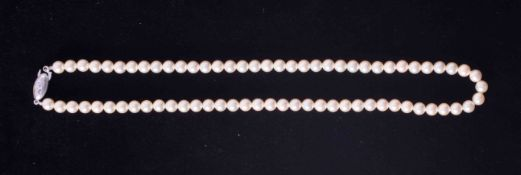 """An 18"""" strand of vintage 6.5mm Akoya pearls with a creamy lustre and uniform in size, strung to an"""