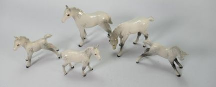 Beswick grey foals: to include 815, 946 grazing, 997, 1816 and1817 (5)