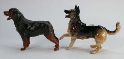 Beswick Alsatian 3073 and Rottweiler 3056 matte (2):