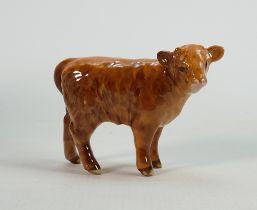 Beswick highland calf 1827D.