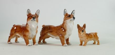 Three Royal Doulton Corgi Dog Figures(3):