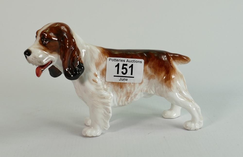 Reg Johnson for Royal Doulton trial Springer Spaniel: Marked to base - studio potter R Johnson