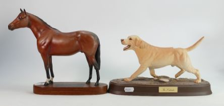 Beswick The Labrador: on ceramic plinth together with similar damaged Thoroughbred Horse(2)