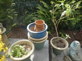 A selection of glazed green and blue garden planters and a fish fountain