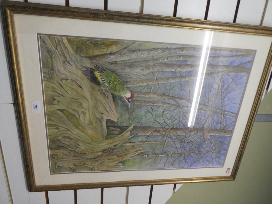 Terence Balm a watercolour of a woodpecker amongst trees 45x64.5cm