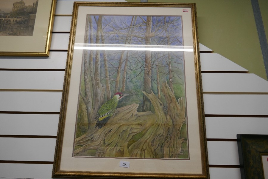 Terence Balm a watercolour of a woodpecker amongst trees 45x64.5cm - Image 3 of 4