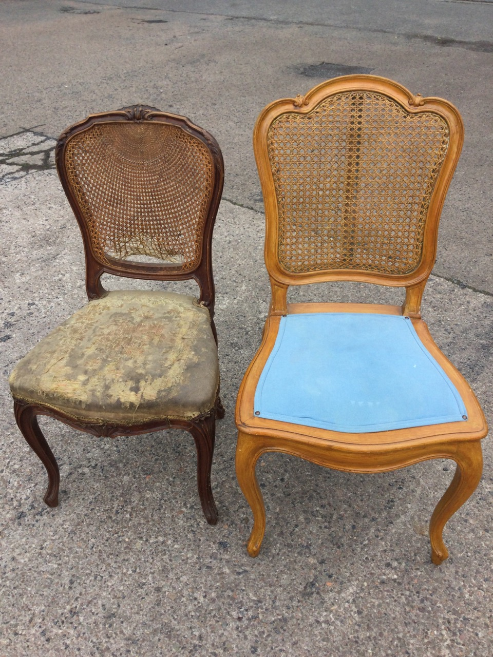 A Victorian mahogany cane backed chair with acanthus carved shield shaped moulded frame, the