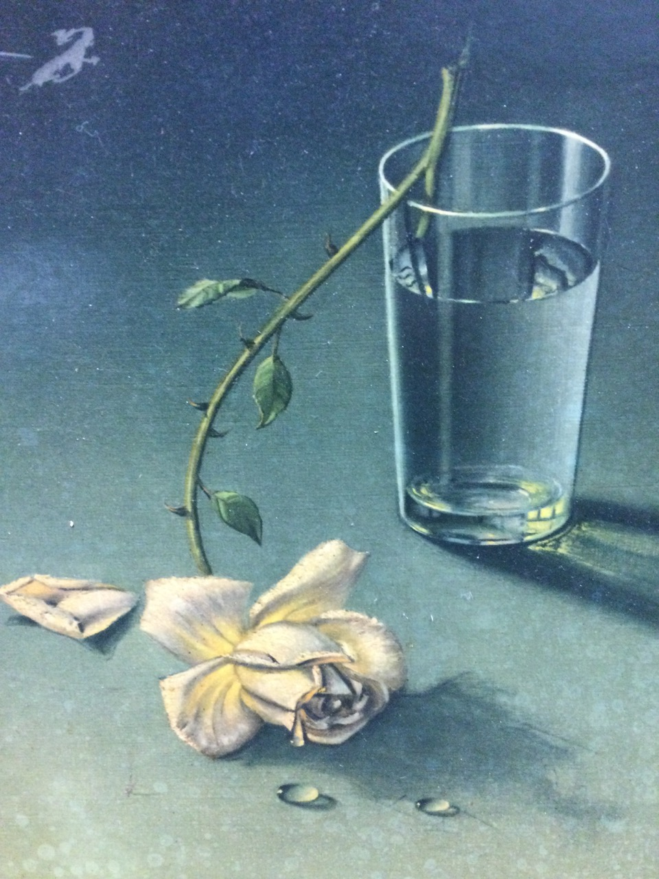 Tretchikoff, a classic vintage 60s print titled Weeping Rose, the still life in original frame. ( - Image 3 of 3