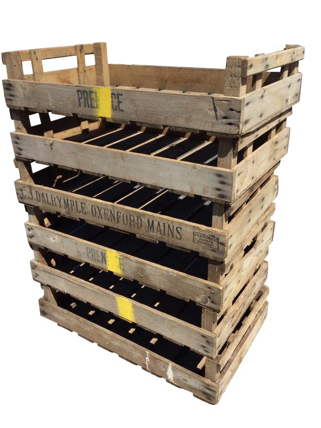 Six rectangular 2ft 6in agricultural produce trays with slatted bases. (29.75in x 17.75in x 6.