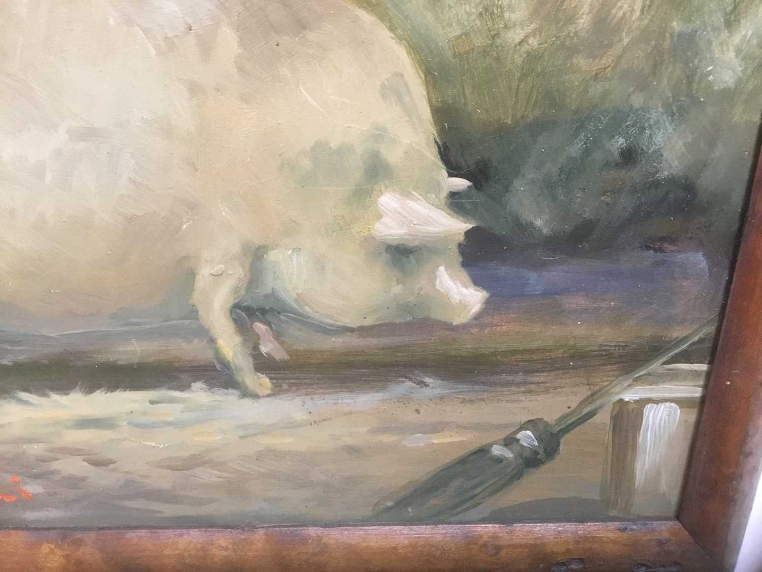 English School, oil on board, Portrait of a pig, indistinctly signed and dated, 20 x 25cm, framed - Image 4 of 7