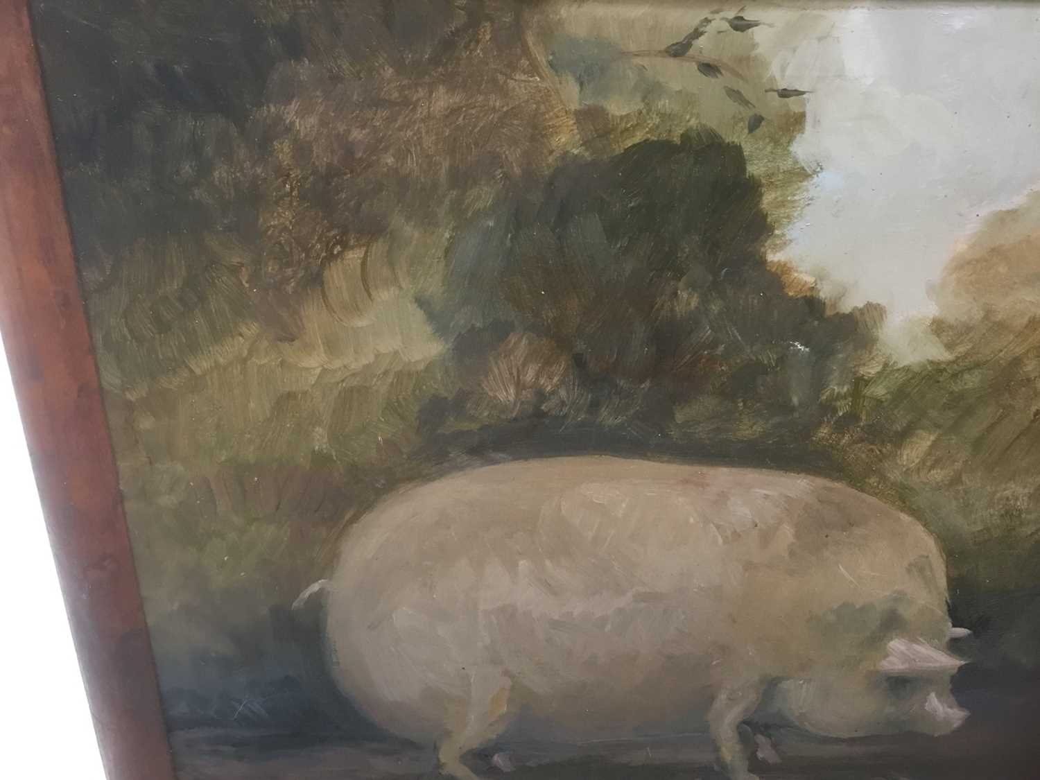 English School, oil on board, Portrait of a pig, indistinctly signed and dated, 20 x 25cm, framed - Image 7 of 7