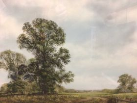 Peter Robinson, (b. 1954) two watercolours, landscapes