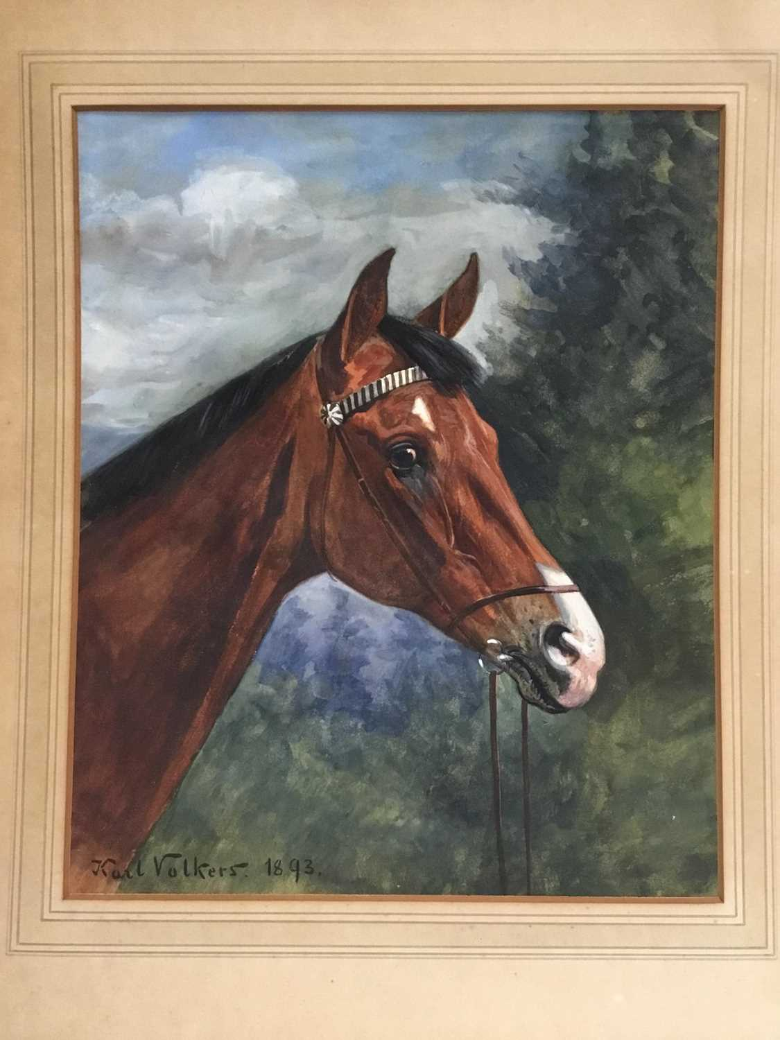 Karl Volkers (1868-1944), Gouache of horse, signed and dated 1893