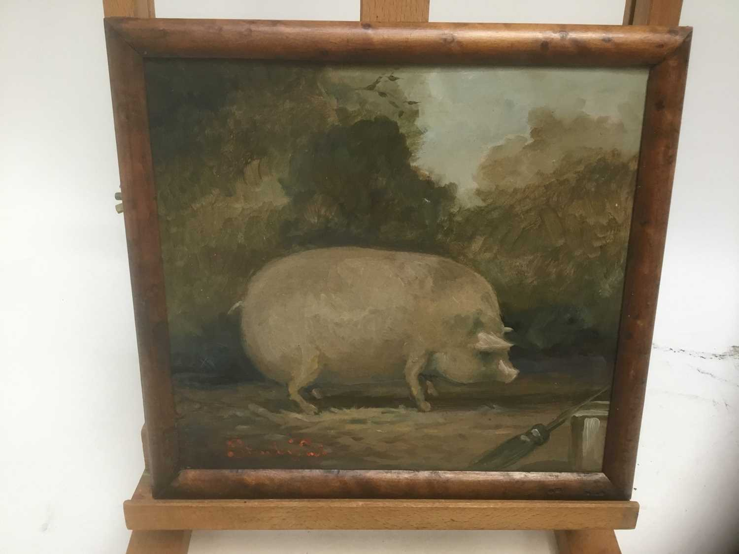 English School, oil on board, Portrait of a pig, indistinctly signed and dated, 20 x 25cm, framed - Image 2 of 7