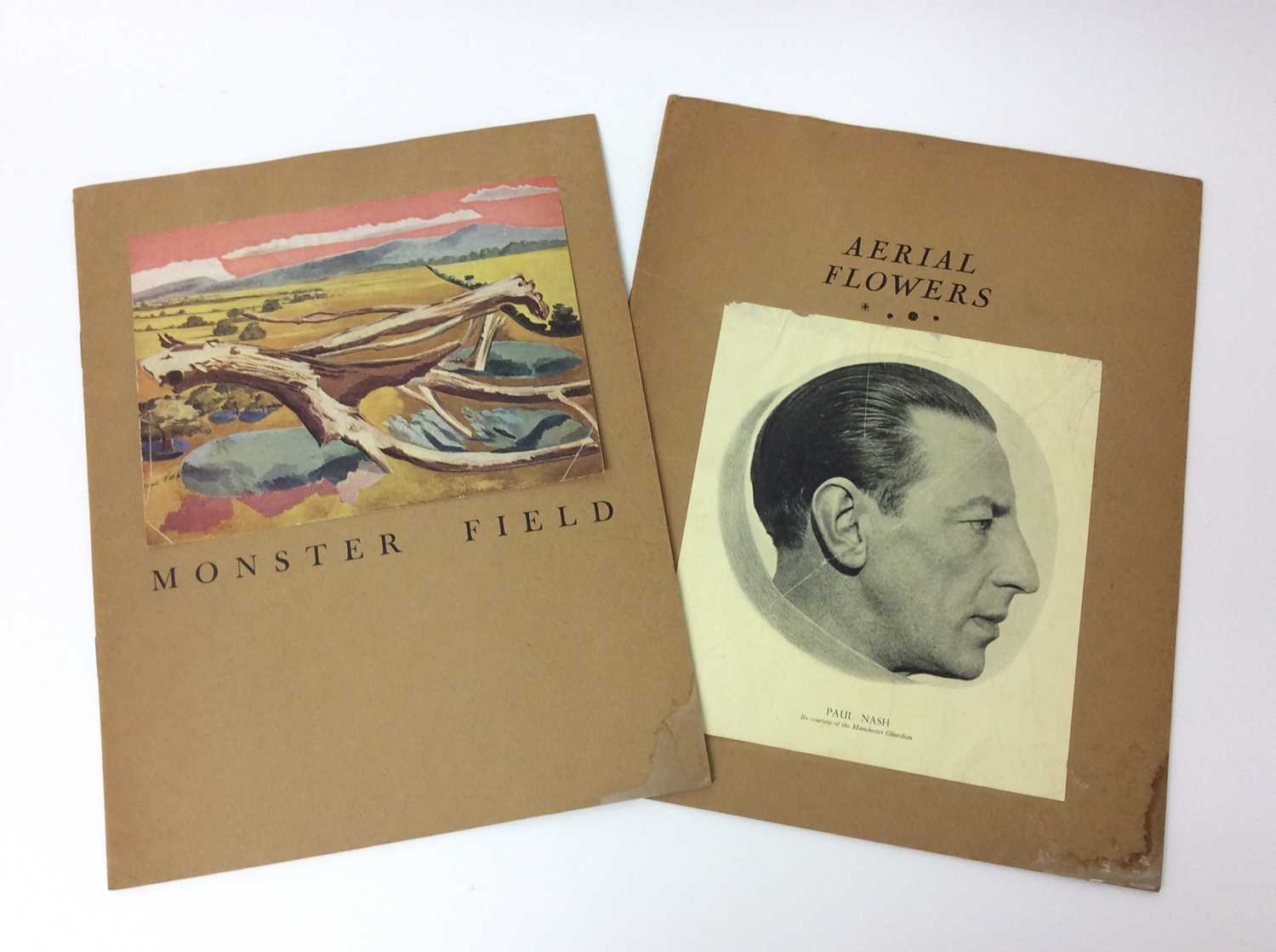 Paul Nash, Monster Field, limited to an edition of 1000, together with Aerial Flowers