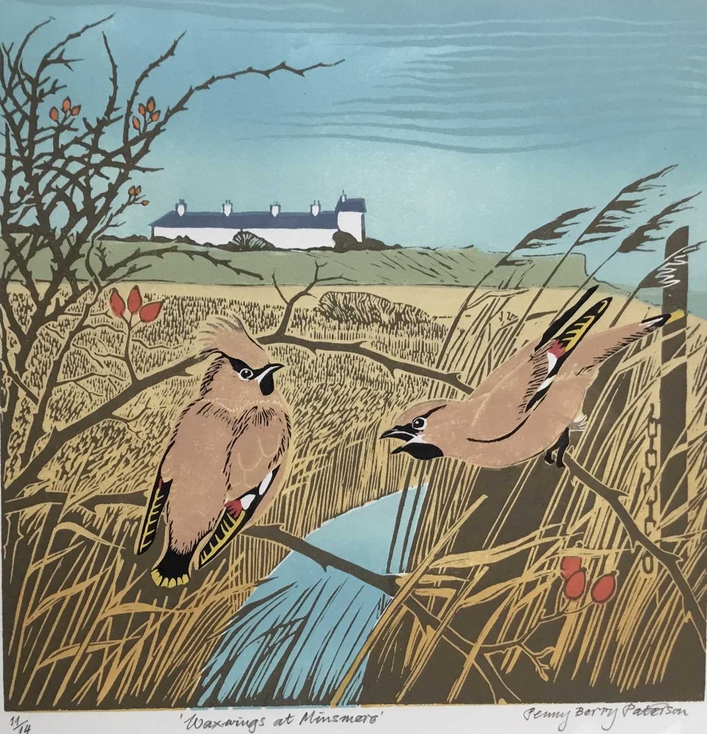 Penny Berry Paterson (1941-2021) colour linocut print, Waxwings at Minsmere, signed and numbered 11/