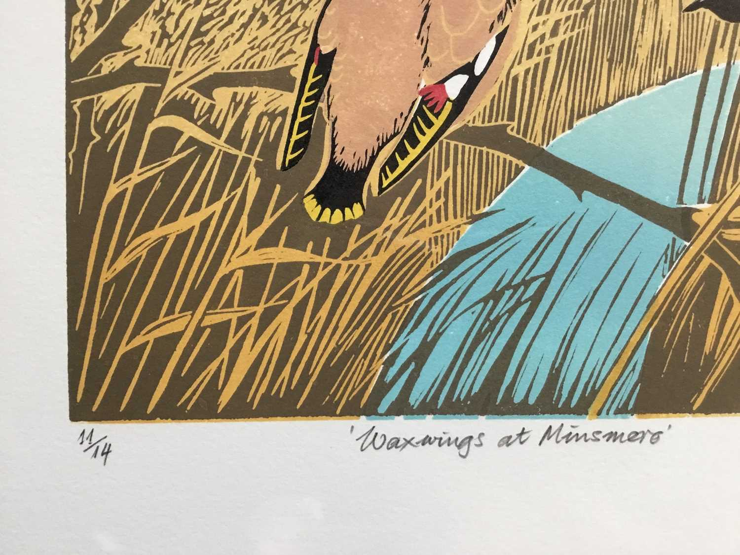 Penny Berry Paterson (1941-2021) colour linocut print, Waxwings at Minsmere, signed and numbered 11/ - Image 3 of 3