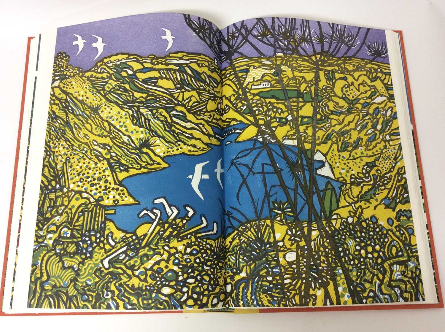 Pennant and His Welsh Landscape with woodcuts by Rigby Graham by Gregynog Press 2006, limited editio - Image 8 of 9
