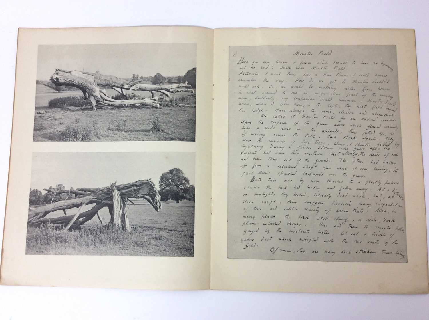 Paul Nash, Monster Field, limited to an edition of 1000, together with Aerial Flowers - Image 3 of 11