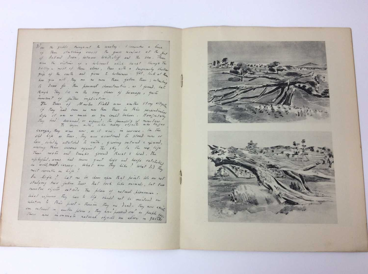 Paul Nash, Monster Field, limited to an edition of 1000, together with Aerial Flowers - Image 4 of 11