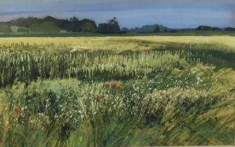 Kit Leese ( contemporary) gouache, Cornfield Withermarsh Green, signed