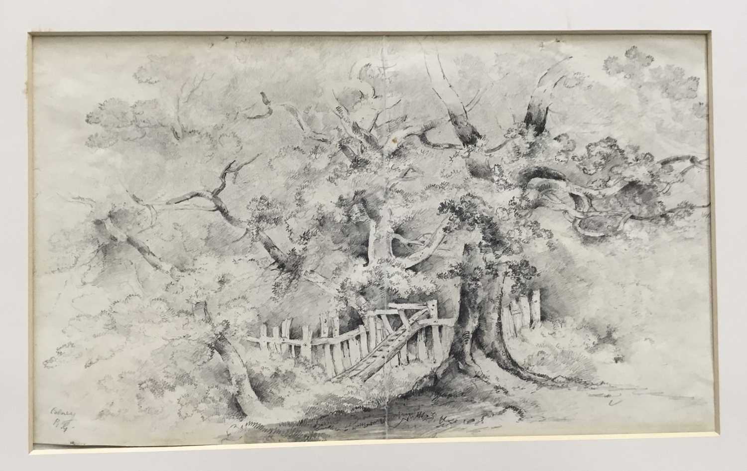 Two folios of works by the Gurney sisters of Norfolk - Image 23 of 31
