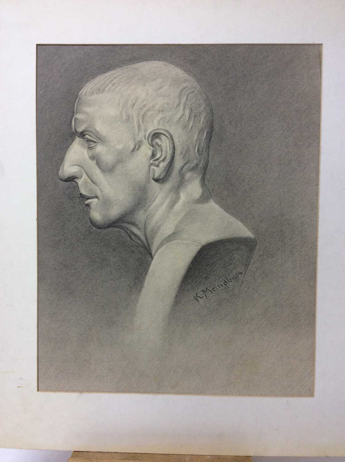 Konrad Meindl (1883-1970) group of eight charcoal works on paper - studies of Classical busts, each - Image 5 of 8