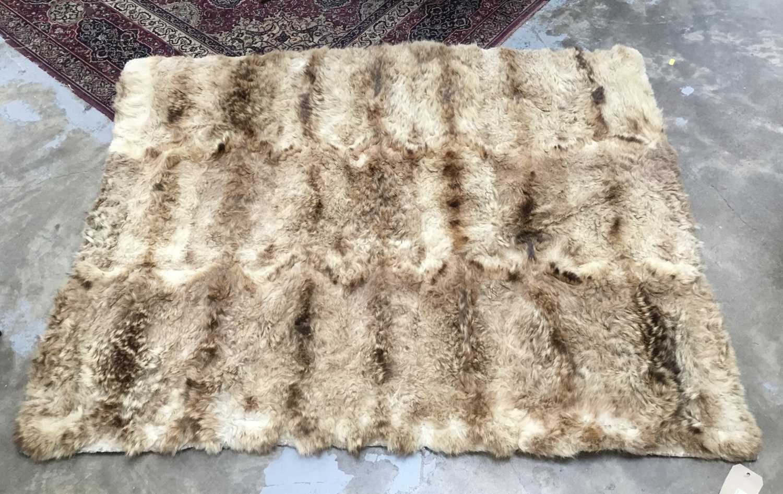 Unusual Scottish wild cat rug, with felt backing, approximately 145 x 105cm