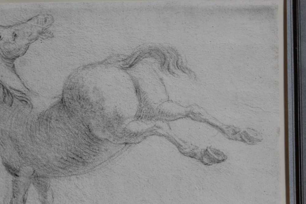 17th century Italian School pencil drawing - a horse, in glazed gilt frame - Image 4 of 9