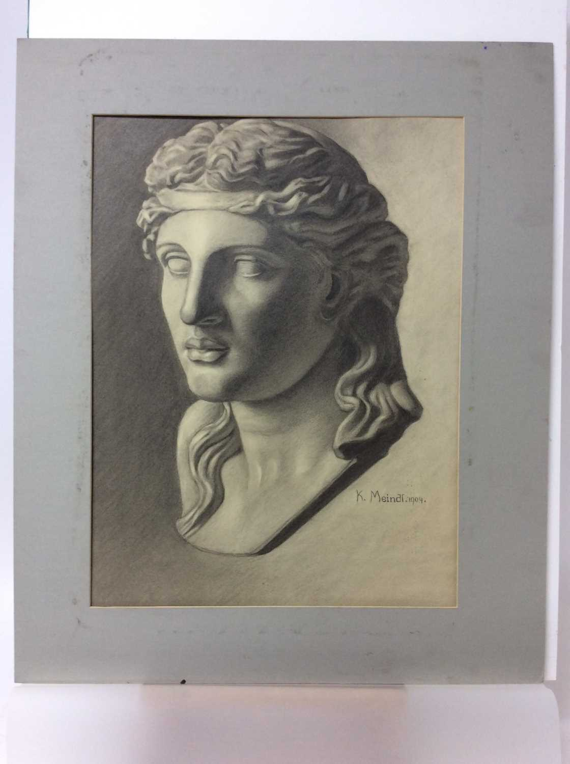 Konrad Meindl (1883-1970) group of eight charcoal works on paper - studies of Classical busts, each - Image 7 of 8