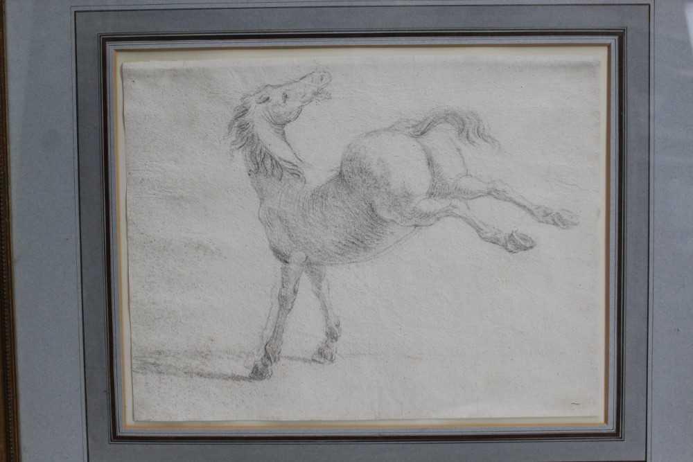 17th century Italian School pencil drawing - a horse, in glazed gilt frame