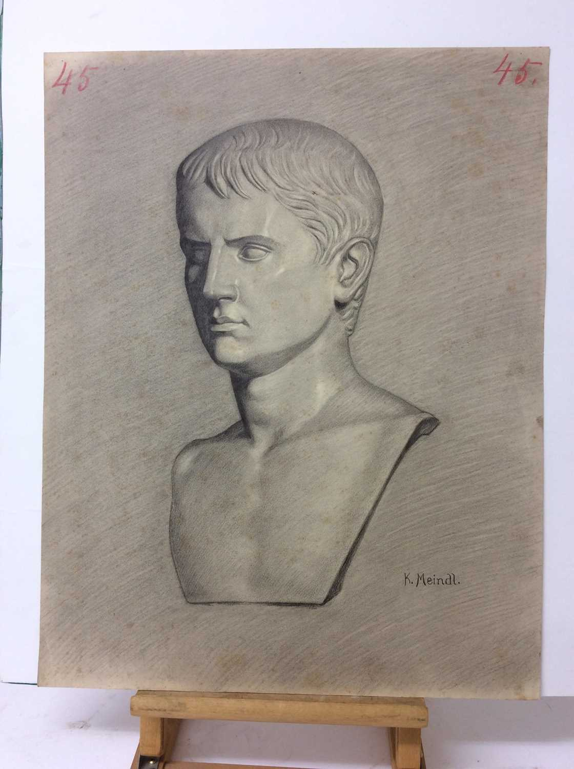 Konrad Meindl (1883-1970) group of eight charcoal works on paper - studies of Classical busts, each - Image 4 of 8