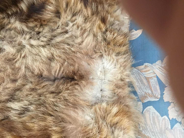 Unusual Scottish wild cat rug, with felt backing, approximately 145 x 105cm - Image 3 of 4